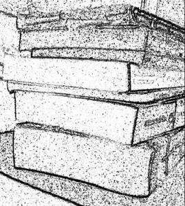 audaxi_books